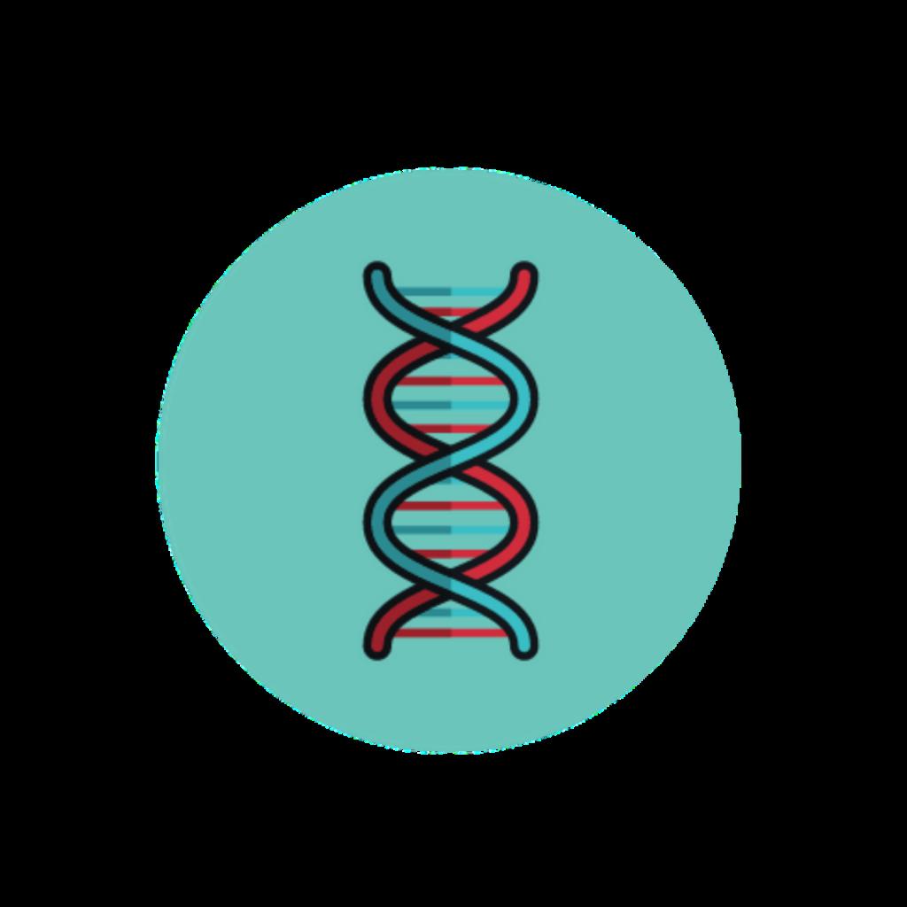 icône d'un chromosome symbolisant l'ADN en sciences maïeutiques