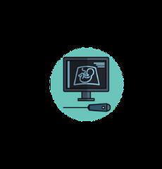 icône d'une échographie illustrant le foetus