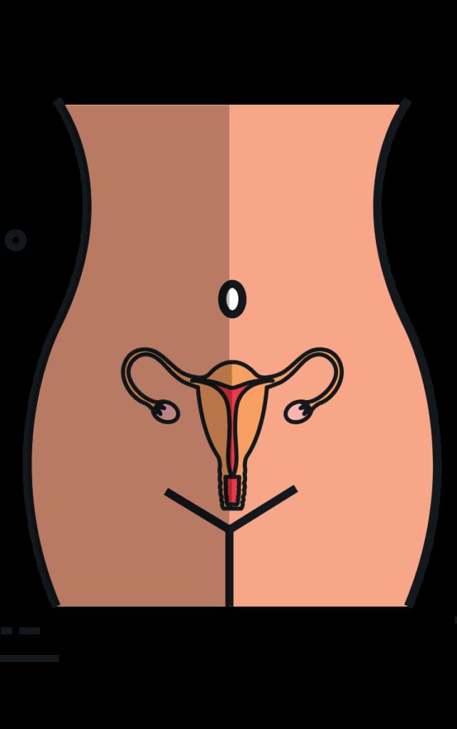 icône d'un buste de femme pour symboliser la rubrique gynécologique